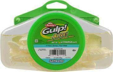 Shrimp Gulp Alive
