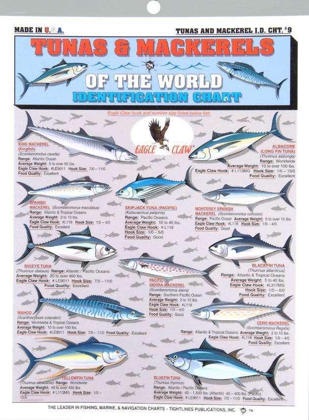 Tightline Publications Tunas & Mackerel Chart