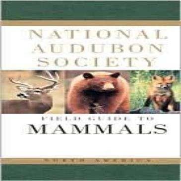 Random House Audbon Field Guide: Mammels Of North America
