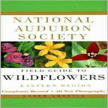 Random House Audbon Field Guide: Wildflowers Eastern - llustrated w/Full Color