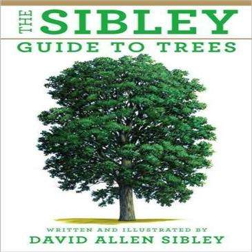 Random House The Sibley Guide To Trees -  500 Maps Show The Complete Range
