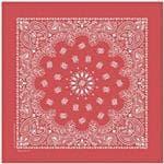 Carolina Manuf Red Stonewashed Bandana - Antique Faded Look w/Ultra-Soft Feel