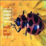 Random House Audbn Pg: Insects & Spider